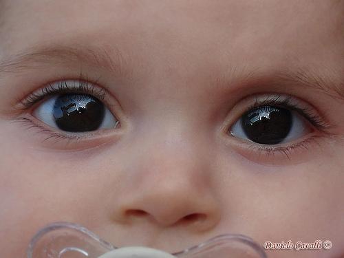 Ojos Anyi / Anyi's eyes
